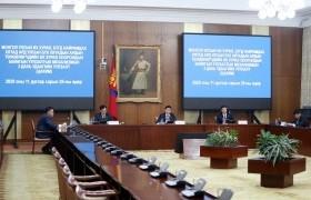 Монгол Хятадын байнгын уулзалтын механизмын гурав дахь удаагийн уулзалт цахимаар боллоо